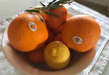 arance-biologiche