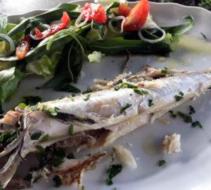 La Cantina del Mare: Viaggio enogastronomico tra un calice di vino e il pescato del giorno