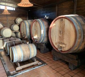 In giro per cantine: Alla scoperta della Cantina del Vesuvio Russo Family Winery